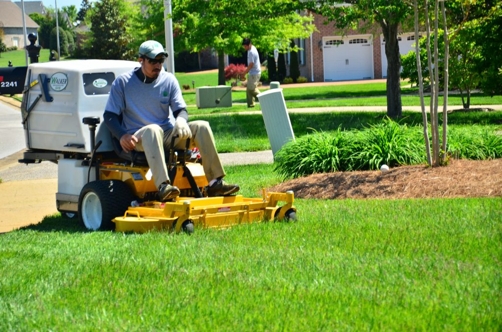 Lawn Mowing: How to Mow a Lawn in Right Way